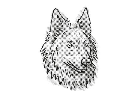 Retro cartoon style drawing of head of a Dutch Shepherd, a domestic dog or canine breed on isolated white background done in black and white. Banco de Imagens