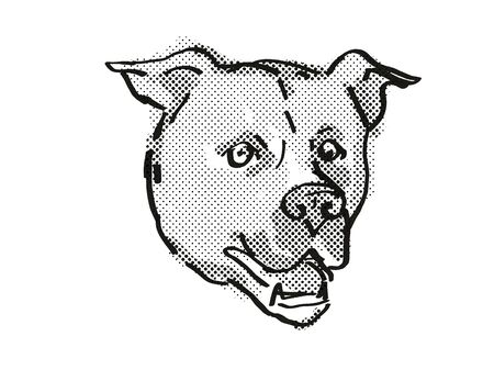Retro cartoon style drawing of head of an American Staffordshire Terrier  , a domestic dog or canine breed on isolated white background done in black and white.