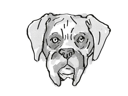 Retro cartoon style drawing of head of a Boxer dog , a domestic dog or canine breed on isolated white background done in black and white.