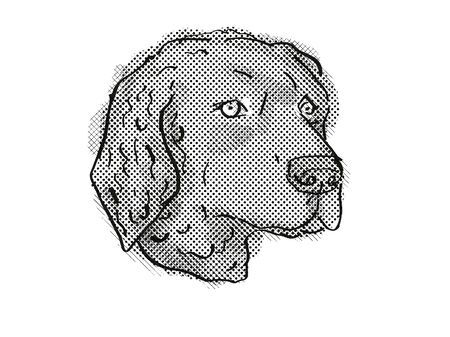 Retro cartoon style drawing of head of a Curly-Coated Retriever, a domestic dog or canine breed on isolated white background done in black and white.
