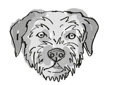 Retro cartoon style drawing of head of a Border Terrier , a domestic dog or canine breed on isolated white background done in black and white.