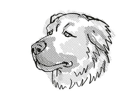 Retro cartoon style drawing of head of a Caucasian Shepherd or Caucasian Mountain Dog or  Baskhan Pariy, a domestic dog breed in black and white. Banco de Imagens