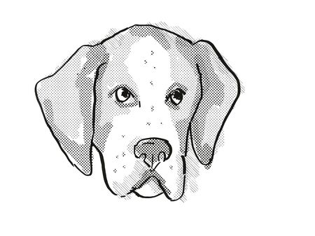Retro cartoon style drawing of head of an American Foxhound  , a domestic dog or canine breed on isolated white background done in black and white.