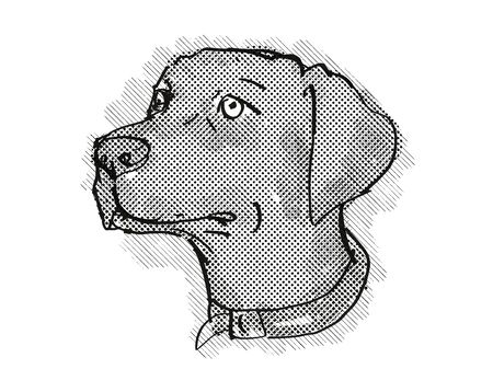 Retro cartoon style drawing of head of a Chesapeake Bay Retriever, a domestic dog or canine breed on isolated white background done in black and white.