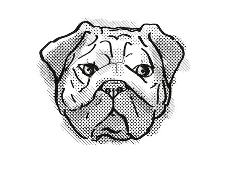 Retro cartoon style drawing of head of a Pug, Chinese pug or  Dutch mastiff  , a domestic dog or canine breed on isolated white background done in black and white. Stockfoto