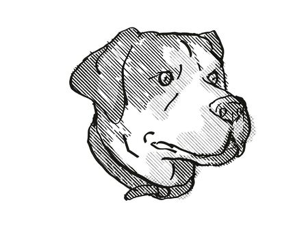 Retro cartoon style drawing of head of a Greater Swiss Mountain Dog, a domestic canine breed on isolated white background done in black and white.