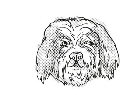 Retro cartoon style drawing of head of a Cavachon, a domestic dog or canine breed on isolated white background done in black and white.