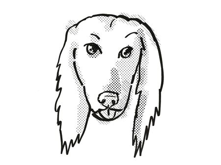 Retro cartoon style drawing of head of an Afghan Hound, a domestic dog or canine breed on isolated white background done in black and white. Banco de Imagens