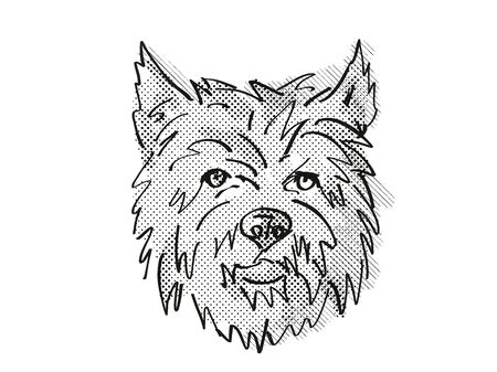 Retro cartoon style drawing of head of a Cairn Terrier, a domestic dog or canine breed on isolated white background done in black and white. Banco de Imagens