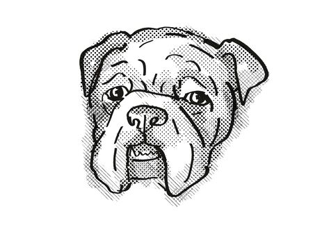 Retro cartoon style drawing of head of a Bulldog  , a domestic dog or canine breed on isolated white background done in black and white. Banco de Imagens