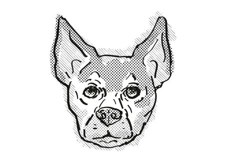 Retro cartoon style drawing of head of a Chihuahua, a domestic dog or canine breed on isolated white background done in black and white. 스톡 콘텐츠