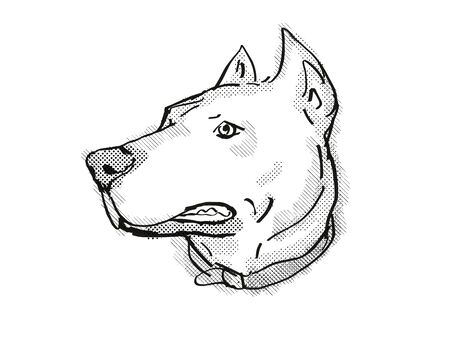 Retro cartoon style drawing of head of a Dogo Argentino, sometimes called the Argentinian Mastiff or the Argentine Dogo, a domestic dog breed on isolated white background done in black and white. Banco de Imagens