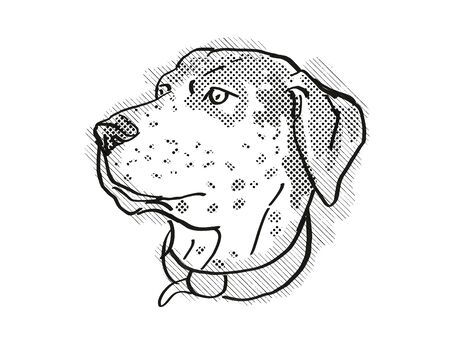 Retro cartoon style drawing of head of a Catahoula Leopoard, a domestic dog or canine breed on isolated white background done in black and white.