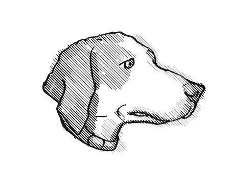 Retro cartoon style drawing of head of a Harrier Dog, a domestic canine breed on isolated white background done in black and white. Banco de Imagens