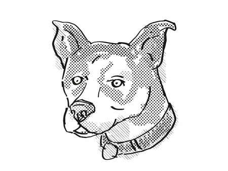 Retro cartoon style drawing of head of a Canaan Dog, a domestic dog or canine breed on isolated white background done in black and white.