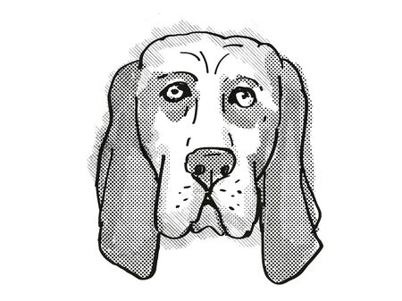 Retro cartoon style drawing of head of a Basset Hound , a domestic dog or canine breed on isolated white background done in black and white. Banco de Imagens