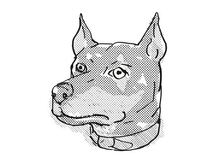 Retro cartoon style drawing of head of a German Pinscher, a domestic dog or canine breed on isolated white background done in black and white. Banco de Imagens