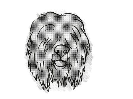 Retro cartoon style drawing of head of a Black Russian Terrier , a domestic dog or canine breed on isolated white background done in black and white.