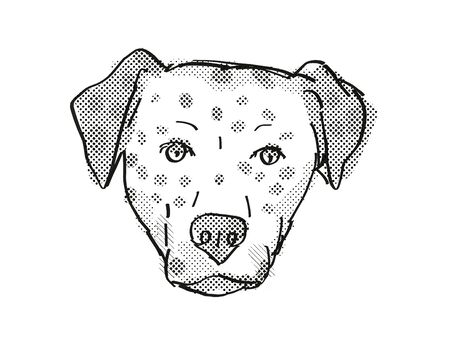 Retro cartoon style drawing of head of a Bullmatian , a domestic dog or canine breed on isolated white background done in black and white. Banco de Imagens