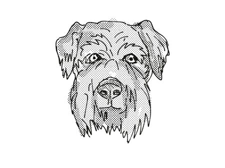 Retro cartoon style drawing of head of a Cesky Terrier, a domestic dog or canine breed on isolated white background done in black and white.
