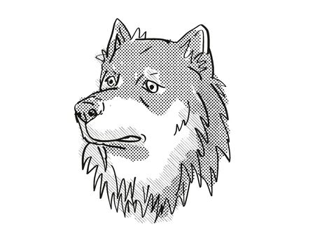 Retro cartoon style drawing of head of a Finnish Lapphund, a domestic dog or canine breed on isolated white background done in black and white. Banco de Imagens