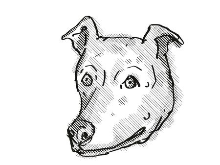 Retro cartoon style drawing of head of a Greyhound, a domestic dog or canine breed on isolated white background done in black and white.