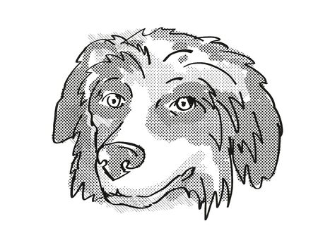 Retro cartoon style drawing of head of a Bernese Mountain Dog  , a domestic dog or canine breed on isolated white background done in black and white.