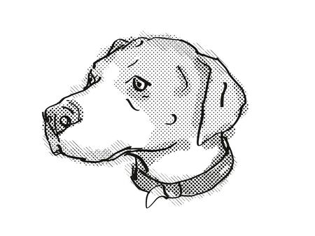 Retro cartoon style drawing of head of an English Foxhound, a domestic dog or canine breed on isolated white background done in black and white. Banco de Imagens