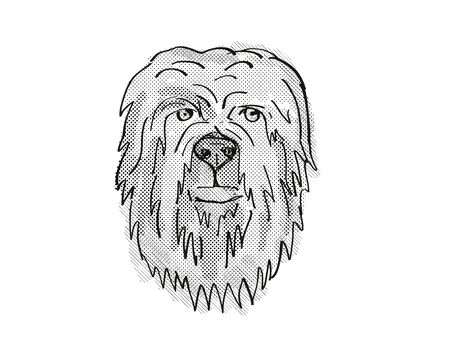 Retro cartoon style drawing of head of a Briard, a domestic dog or canine breed on isolated white background done in black and white.