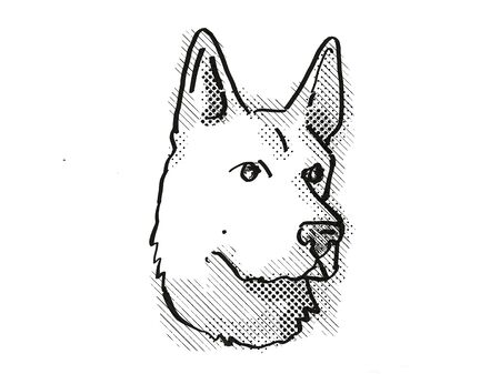 Retro cartoon style drawing of head of a German Shepherd , a domestic dog or canine breed on isolated white background done in black and white.