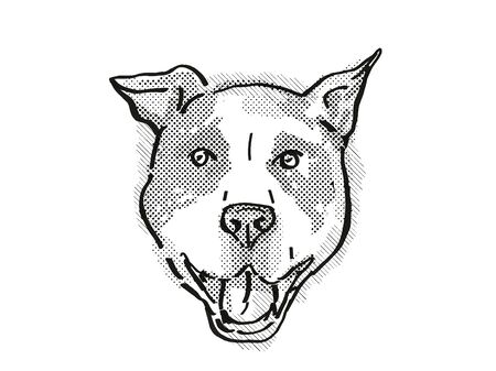 Retro cartoon style drawing of head of an American Pit Bull Terrier  , a domestic dog or canine breed on isolated white background done in black and white.