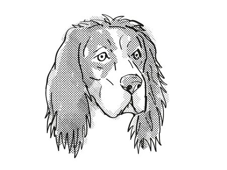 Retro cartoon style drawing of head of an English Setter, a domestic dog or canine breed on isolated white background done in black and white.