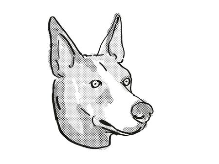 Retro cartoon style drawing of head of a Basenji dog , a domestic dog or canine breed on isolated white background done in black and white. Banco de Imagens
