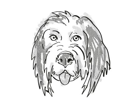 Retro cartoon style drawing of head of a Bernedoodle or Bernese Mountain Poo  , a domestic dog or canine breed on isolated white background done in black and white. Banco de Imagens