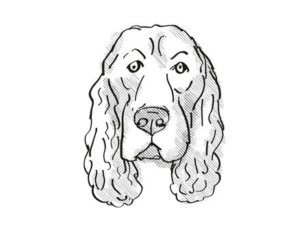 Retro cartoon style drawing of head of a Field Spaniel, a domestic dog or canine breed on isolated white background done in black and white.