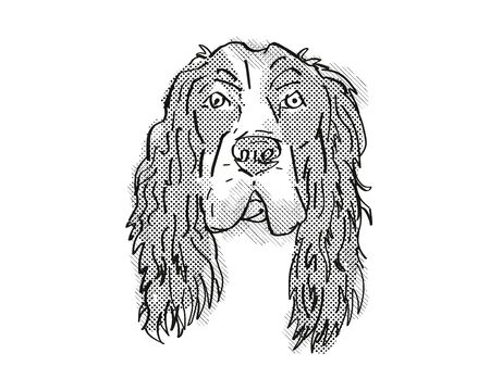 Retro cartoon style drawing of head of a English Cocker Spaniel, a domestic dog or canine breed on isolated white background done in black and white. Banco de Imagens