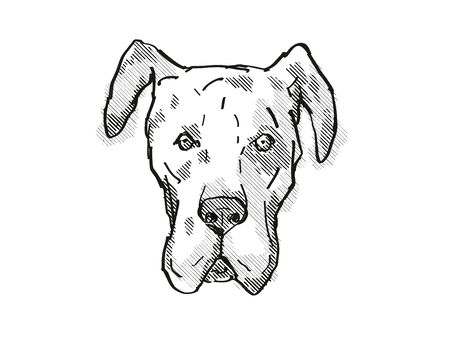 Retro cartoon style drawing of head of a Great Dane, a domestic dog or canine breed on isolated white background done in black and white.