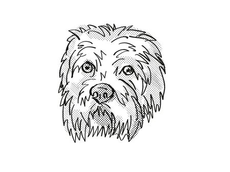 Retro cartoon style drawing of head of a Dandie Dinmont Terrier, a domestic dog or canine breed on isolated white background done in black and white.
