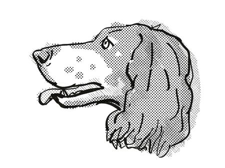 Retro cartoon style drawing of head of a French Spaniel, a domestic dog or canine breed on isolated white background done in black and white.