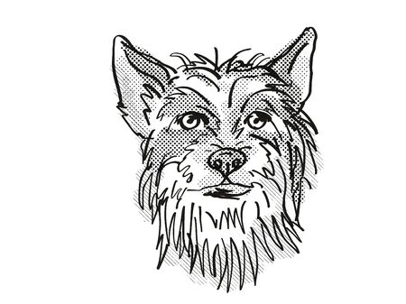Retro cartoon style drawing of head of a Chinese Crested, a domestic dog or canine breed on isolated white background done in black and white.