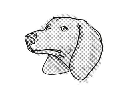 Retro cartoon style drawing of head of a Dachshund, a domestic dog or canine breed on isolated white background done in black and white.