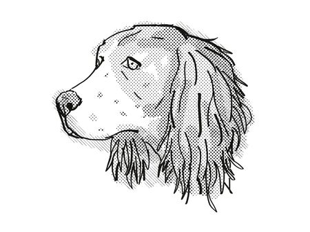 Retro cartoon style drawing of head of an English Springer Spaniel, a domestic dog or canine breed on isolated white background done in black and white.