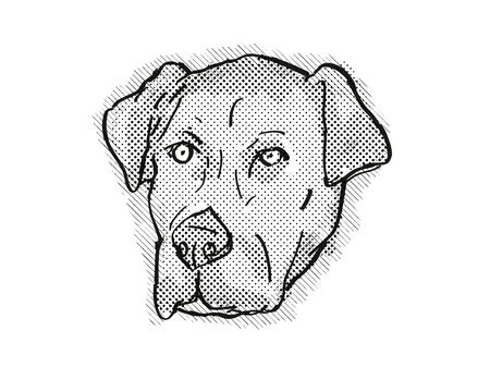 Retro cartoon style drawing of head of a Catahoula Bulldog also known as American Mastahoulas, a domestic dog or canine breed on isolated white background done in black and white. Banco de Imagens