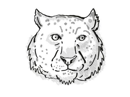 Retro cartoon style drawing of head of a snow leopard, an endangered wildlife species on isolated white background done in black and white.