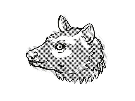 Retro cartoon style drawing of head of an Asian Palm civet or Common Palm civet , an endangered wildlife species on isolated white background done in black and white.