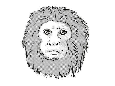 Retro cartoon style drawing of head of a Golden Lion Tamarin or Leontopithecus Rosalia , an endangered wildlife species on isolated white background done in black and white.