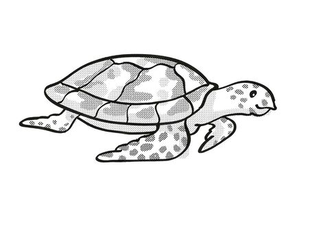 Retro cartoon mono line style drawing of a Hawksbill turtle , an endangered wildlife species on isolated white background done in black and white full body.