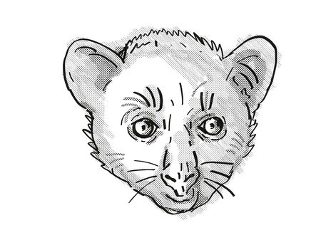 Retro cartoon style drawing of head of an Aye-Aye or Daubentonia madagascariensis , an endangered wildlife species on isolated white background done in black and white. Stock fotó