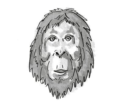 Retro cartoon style drawing of head of an Orangutan  , an endangered wildlife species on isolated white background done in black and white.