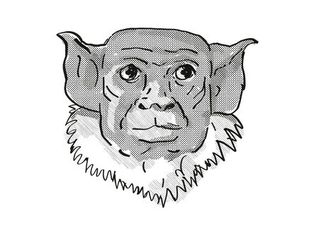 Retro cartoon style drawing of head of a pied tamarin, a small species of monkey in the rainforest of Brazil and an endangered wildlife species on isolated white background done in black and white. Фото со стока